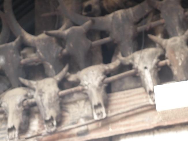 Above the entrance of a Naga home
