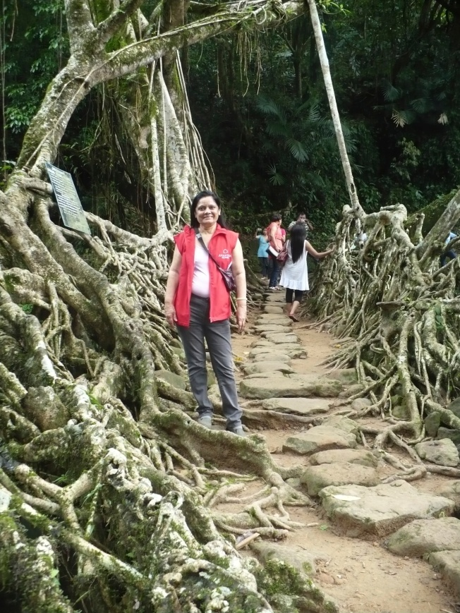 Living Root Bridge @ Ravai